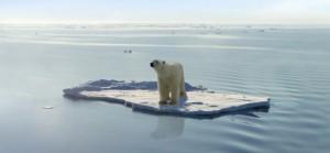 fonte arctique ours blanc